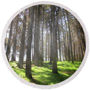 Round Beach Towel featuring the photograph Enchanted by Laurie Search