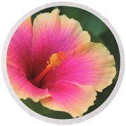 Encore Presentation - Simple Pleasure Hibiscus Round Beach Towel