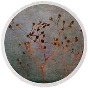 Round Beach Towel featuring the photograph End And Beginning by Randi Grace Nilsberg