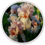 End Of Day Pink Irises 6702 H_2 Round Beach Towel