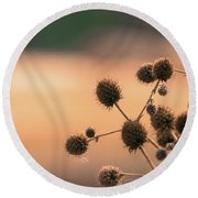 Round Beach Towel featuring the photograph End Of Summer by Lisa L Silva