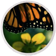 End Of Summer Monarch Round Beach Towel
