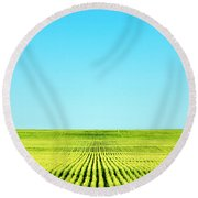 Endless Rows Of Wheat Round Beach Towel