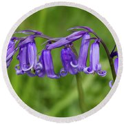 English Bluebells 1 Round Beach Towel by Shirley Mitchell