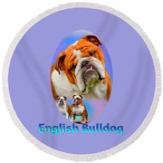 English Bulldog With Border Round Beach Towel