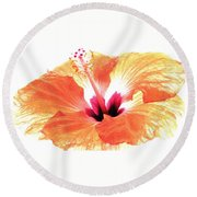 Enlightened Round Beach Towel by Angela Davies