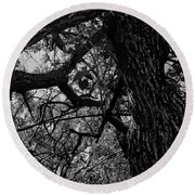 Enter The Woods In Black And White Round Beach Towel