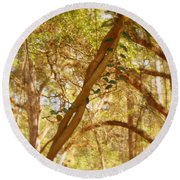 Entwined Round Beach Towel by Paul  Wilford