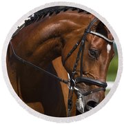 Round Beach Towel featuring the photograph Equestrian At Work D4913 by Wes and Dotty Weber