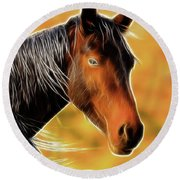 Round Beach Towel featuring the photograph Equine Colors by Steve McKinzie
