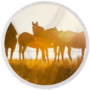 Equine Glow Round Beach Towel by Todd Klassy