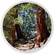 Round Beach Towel featuring the photograph Ernie Maxwell Scenic Trail - Idyllwild by Glenn McCarthy