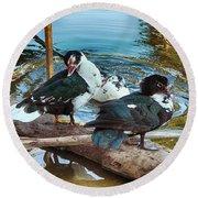 Estuary Ducks Round Beach Towel