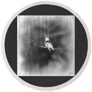 Round Beach Towel featuring the photograph Etching by Barbara S Nickerson