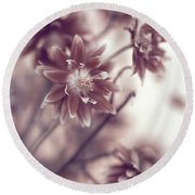 Round Beach Towel featuring the photograph Eternal Flower Dreams  by Jenny Rainbow