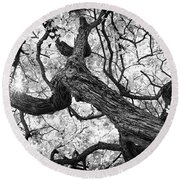 Ethereal Maple Round Beach Towel
