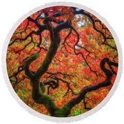 Round Beach Towel featuring the photograph Ethereal Tree Alive by Darren White