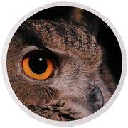 Eurasian Eagle-owl #3 Round Beach Towel