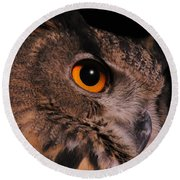 Eurasian Eagle-owl Round Beach Towel