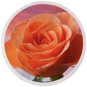 Round Beach Towel featuring the photograph Evening Rose by Terence Davis