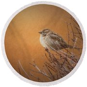 Evening Sparrow Song Round Beach Towel