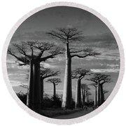 evening under the baobabs of Madagascar bw Round Beach Towel