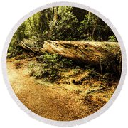Evergreen Jungle Trails Round Beach Towel