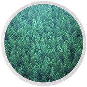 Evergreen Round Beach Towel
