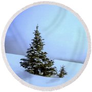Round Beach Towel featuring the painting Evergreen Offspring P D P by David Dehner