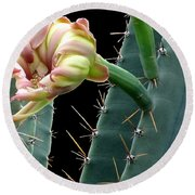 Every Cactus Flower Has It's Thorns  Round Beach Towel