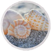Round Beach Towel featuring the photograph Every Shell Has A Story by Melanie Moraga