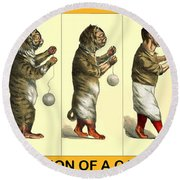 Evolution Of A Cat-cher Round Beach Towel