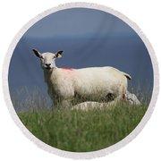 Ewe Guarding Lamb Round Beach Towel
