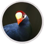 Round Beach Towel featuring the photograph Exotic Bird by Heidi Poulin