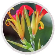 Exotic Flowers Round Beach Towel