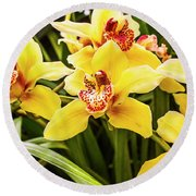 Exotic Orchids  Round Beach Towel