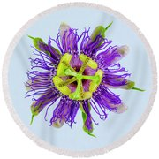 Expressive Yellow Green And Violet Passion Flower 50674b Round Beach Towel