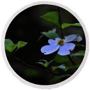 Round Beach Towel featuring the photograph Exquisite Light by Skip Willits