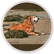 Extended Summer Round Beach Towel