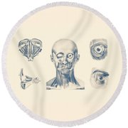 Eye And Facial Anatomy - Multiview Round Beach Towel