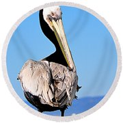 Round Beach Towel featuring the photograph Eye Contact by AJ Schibig