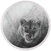 Eye Of The Lion Round Beach Towel