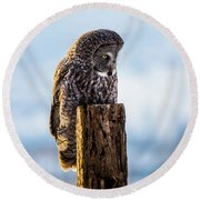 Eye On The Prize - Great Gray Owl Round Beach Towel