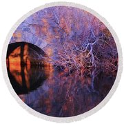 Round Beach Towel featuring the photograph Eye Test by Sean Sarsfield