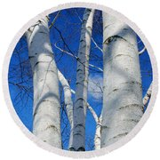 Eyes Of Birch Round Beach Towel