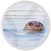 Round Beach Towel featuring the photograph Eyes Of Doubt by Debbie Stahre