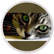 Round Beach Towel featuring the mixed media Eyes Of The Cat by Charles Shoup