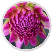 Face Of Dahlia Round Beach Towel