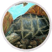 Face Off At The Waterhole Round Beach Towel