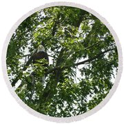 Face The Eagle Round Beach Towel by Donald C Morgan